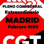 Pleno Confederal Extraordinario de Febrero de 1993