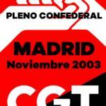 Pleno Confederal de Noviembre de 2003