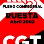 Pleno Confederal de Abril de 2002