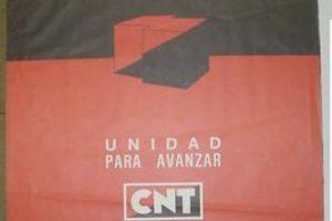 IX Congreso Extraordinario Unificación Madrid
