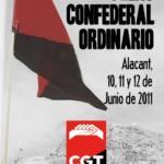 Pleno Confederal Ordinario de junio del 2011