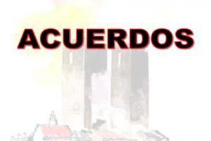 Pleno Confederal Extraordinario de febrero 2013