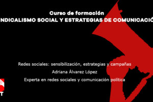 Redes sociales: sensibilización, estrategias y campañas