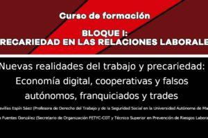 Precariedad en las relaciones laborales: Nuevas realidades del trabajo y precariedad: Economía digital, cooperativas y falsos autónomos, franquiciados y trades